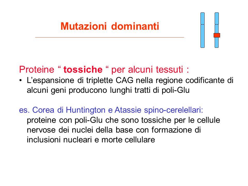 Mutazioni dominanti Proteine tossiche per alcuni tessuti :