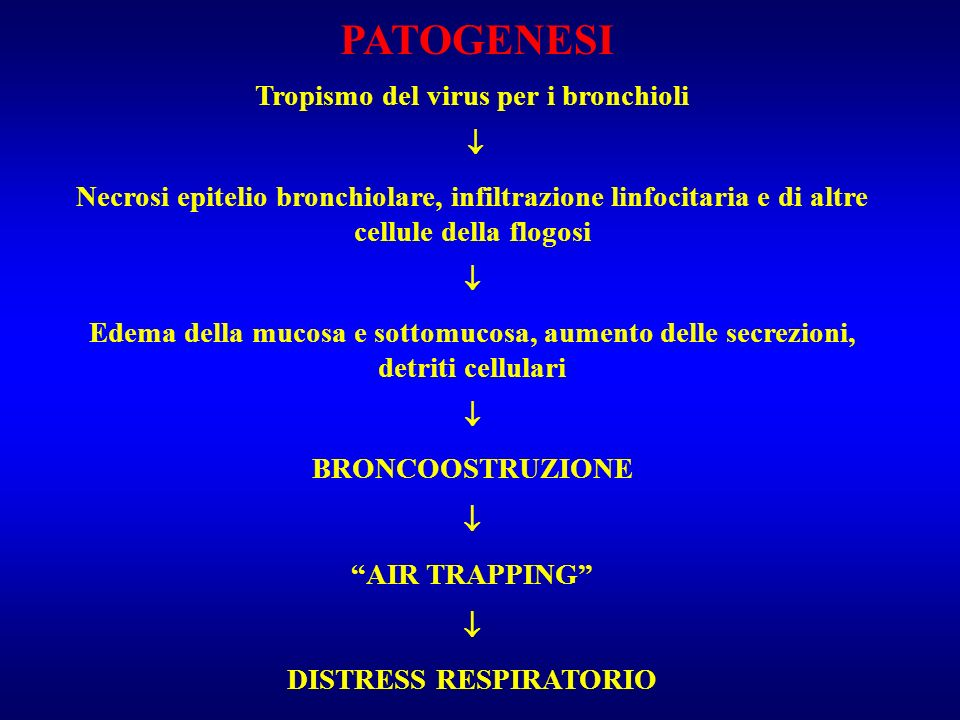 Tropismo del virus per i bronchioli DISTRESS RESPIRATORIO