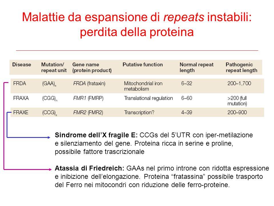 Malattie da espansione di repeats instabili: perdita della proteina