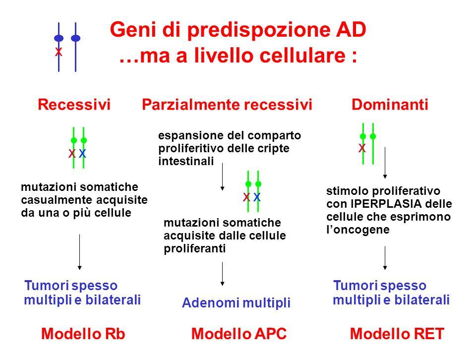 Geni di predispozione AD …ma a livello cellulare :