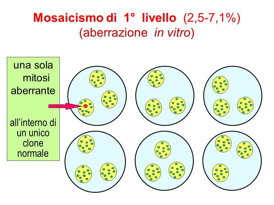 Mosaicismo di 1° livello (2,5-7,1%) (aberrazione in vitro)