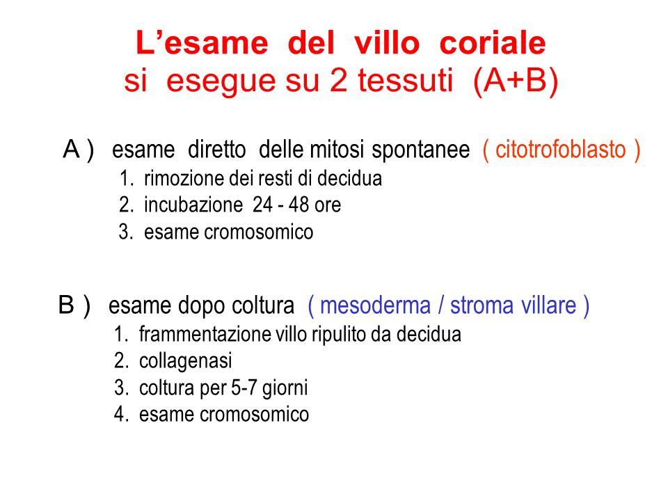 L'esame del villo coriale si esegue su 2 tessuti (A+B)