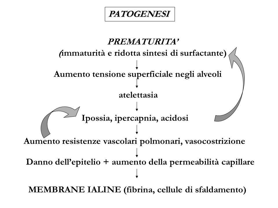 PREMATURITA' (immaturità e ridotta sintesi di surfactante)