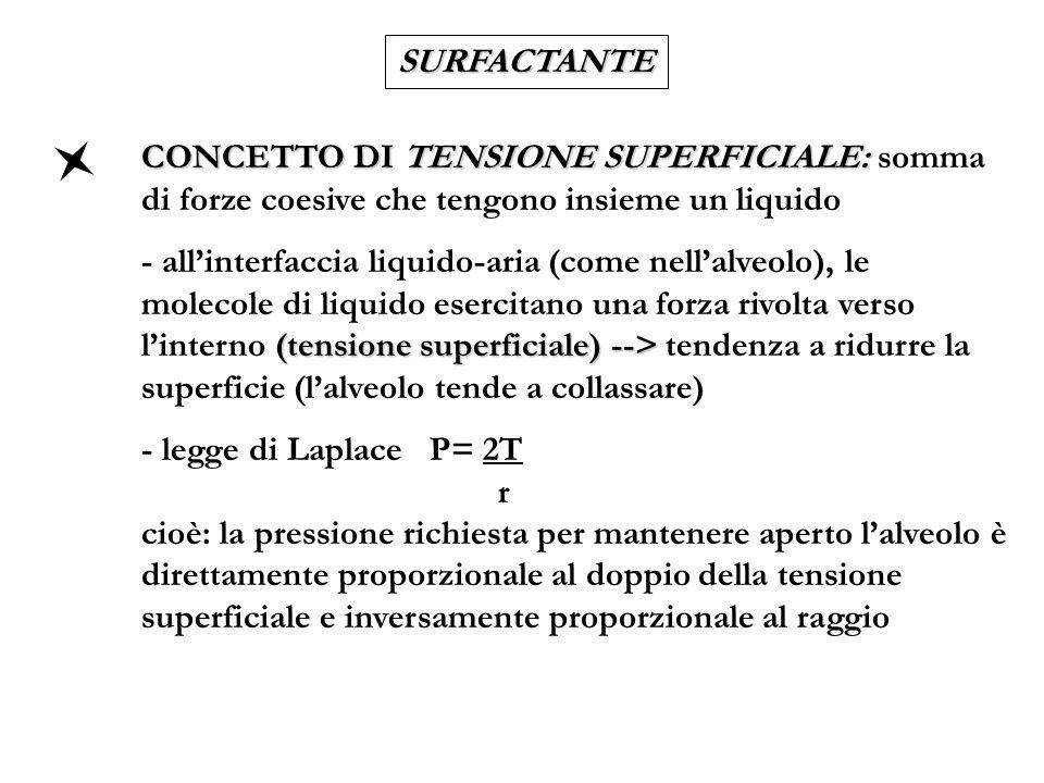 SURFACTANTE CONCETTO DI TENSIONE SUPERFICIALE: somma di forze coesive che tengono insieme un liquido.