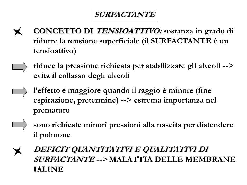 SURFACTANTE CONCETTO DI TENSIOATTIVO: sostanza in grado di ridurre la tensione superficiale (il SURFACTANTE è un tensioattivo)