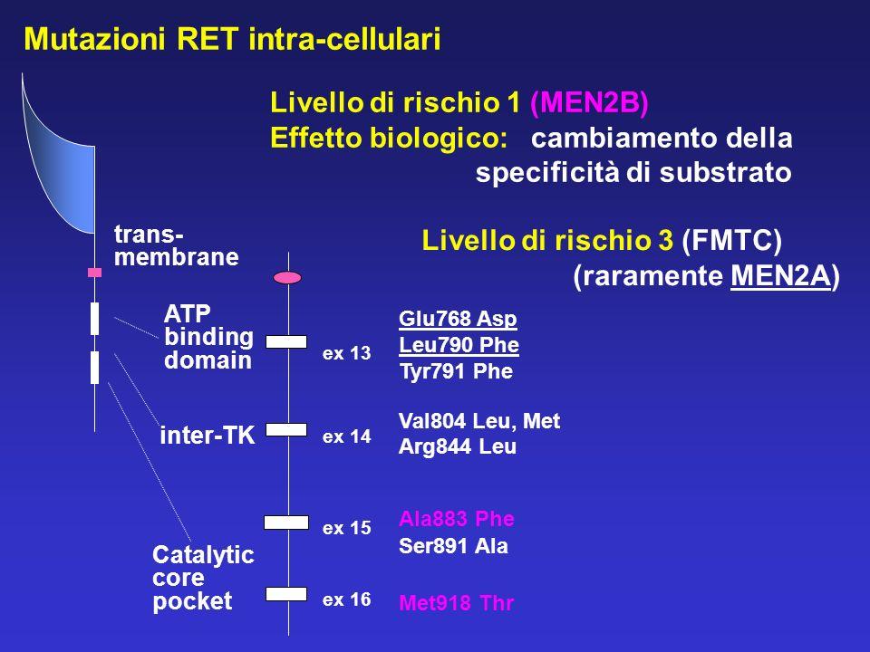 Mutazioni RET intra-cellulari