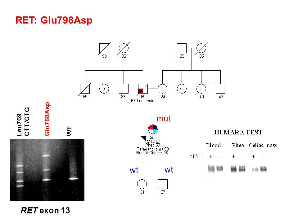 RET: Glu798Asp mut wt RET exon 13 Glu768Asp CTT/CTG Leu769 WT