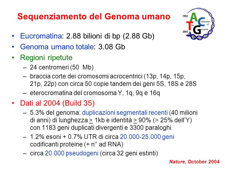 Sequenziamento del Genoma umano