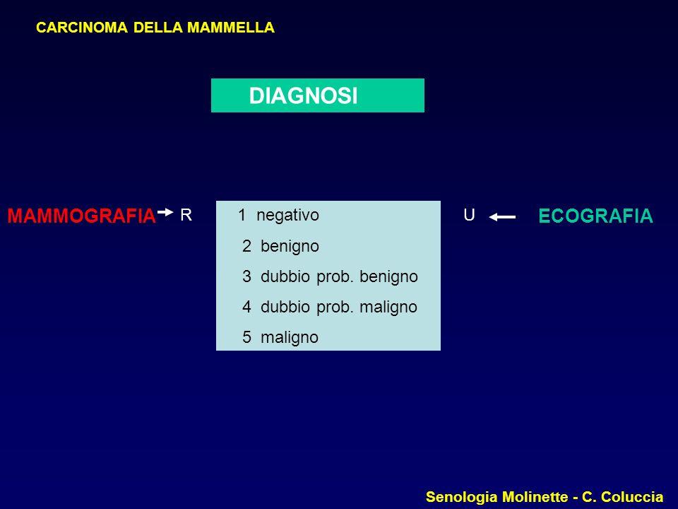 DIAGNOSI MAMMOGRAFIA ECOGRAFIA R 1 negativo 2 benigno