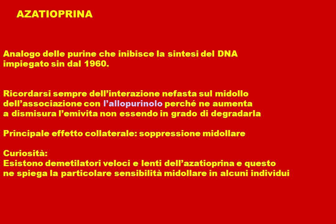 AZATIOPRINA Analogo delle purine che inibisce la sintesi del DNA
