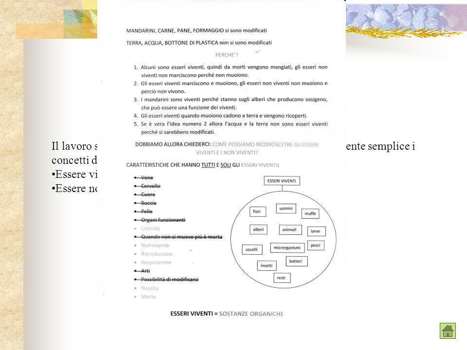 Il lavoro svolto ci ha permesso di inserire in maniera relativamente semplice i concetti di: