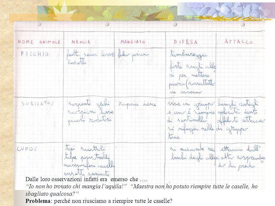 Gli alunni, abituati ad usare le tabelle per registrare i dati di osservazione, hanno proposto questo metodo per comparare le abitudini dei vari animali.