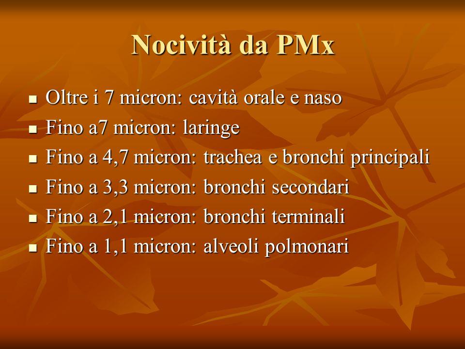 Nocività da PMx Oltre i 7 micron: cavità orale e naso