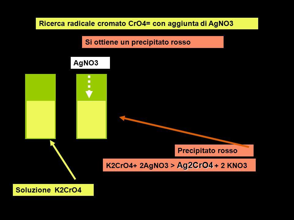 Ricerca radicale cromato CrO4= con aggiunta di AgNO3
