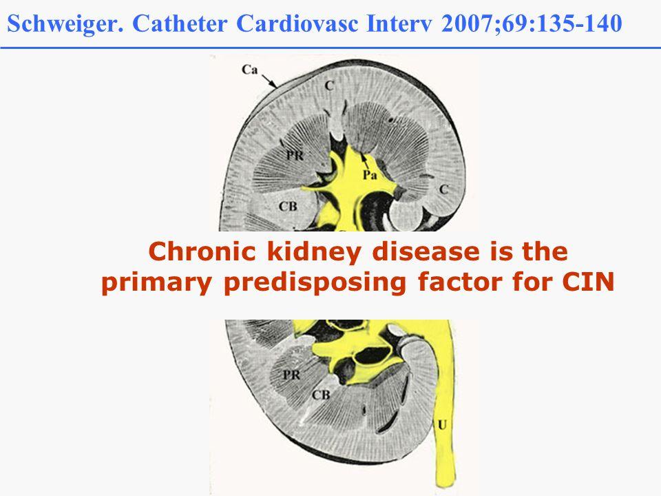 Schweiger. Catheter Cardiovasc Interv 2007;69:135-140