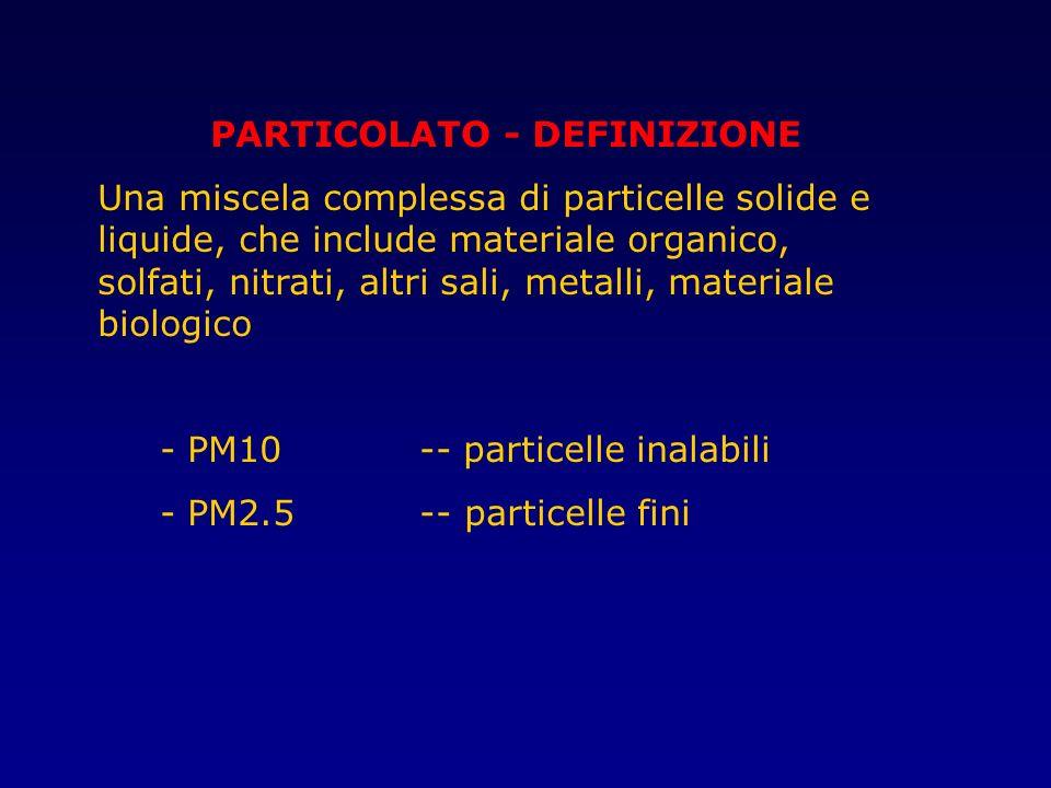 PARTICOLATO - DEFINIZIONE
