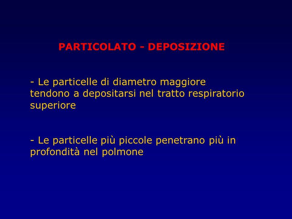 PARTICOLATO - DEPOSIZIONE