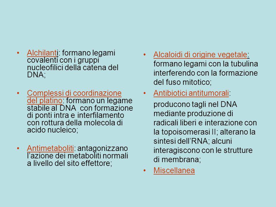 Alchilanti: formano legami covalenti con i gruppi nucleofilici della catena del DNA;