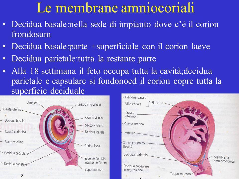 Le membrane amniocoriali