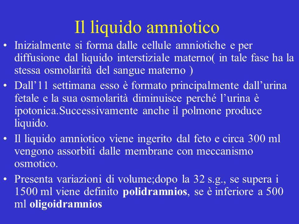 Il liquido amniotico