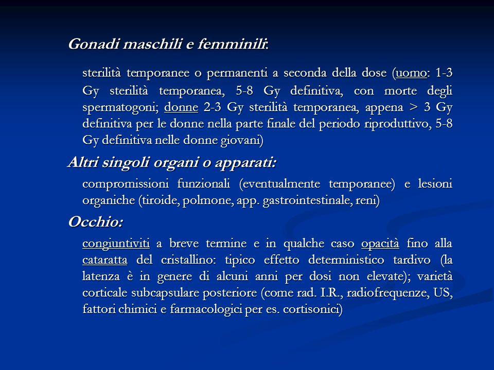 Gonadi maschili e femminili: