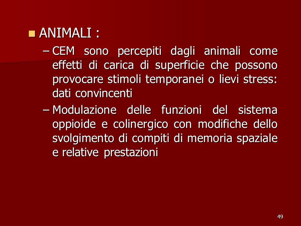 ANIMALI :