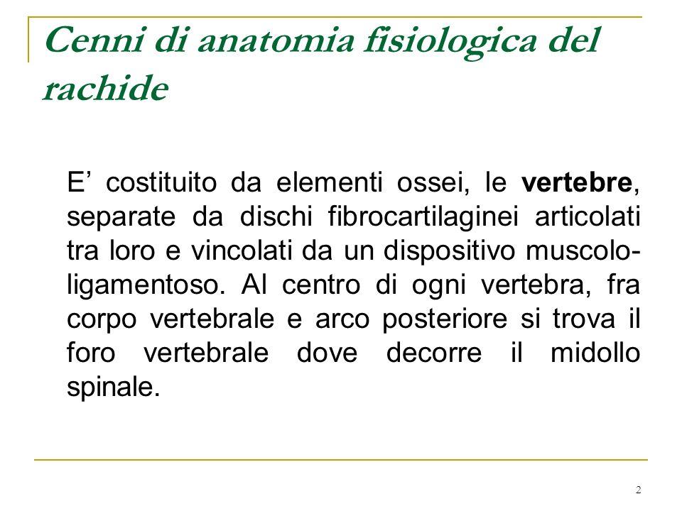 Cenni di anatomia fisiologica del rachide