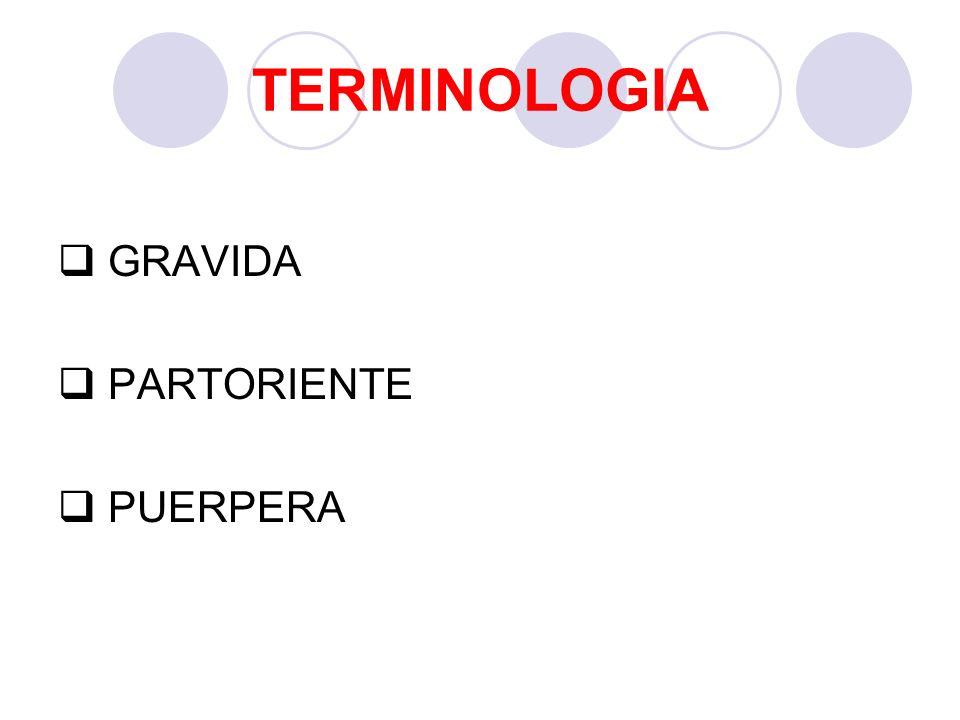 TERMINOLOGIA GRAVIDA PARTORIENTE PUERPERA