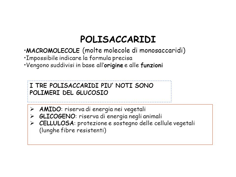 POLISACCARIDI MACROMOLECOLE (molte molecole di monosaccaridi)