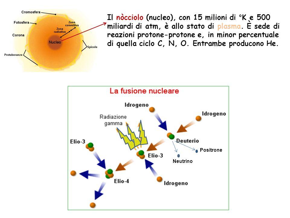 Il nòcciolo (nucleo), con 15 milioni di °K e 500 miliardi di atm, è allo stato di plasma. È sede di reazioni protone-protone e, in minor percentuale di quella ciclo C, N, O. Entrambe producono He.