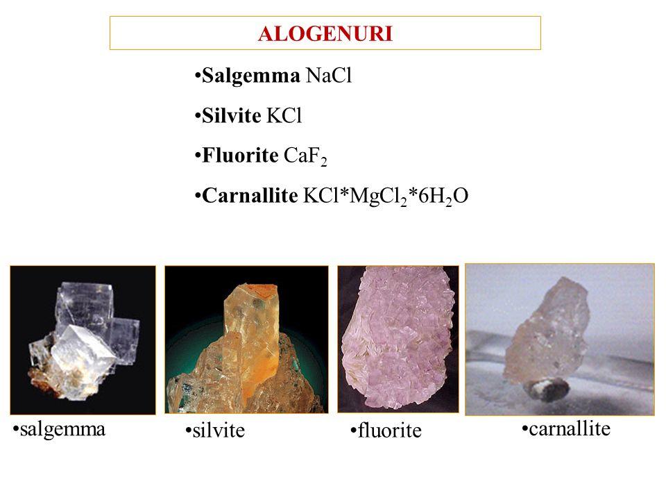 ALOGENURI Salgemma NaCl. Silvite KCl. Fluorite CaF2. Carnallite KCl*MgCl2*6H2O. salgemma. silvite.