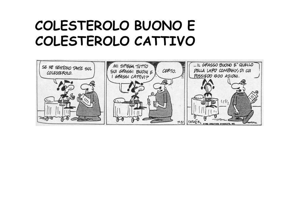 COLESTEROLO BUONO E COLESTEROLO CATTIVO