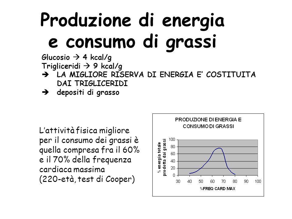 Produzione di energia e consumo di grassi