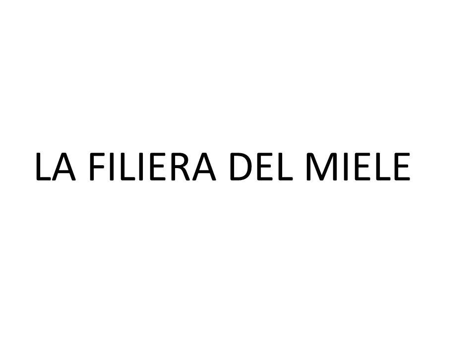 LA FILIERA DEL MIELE