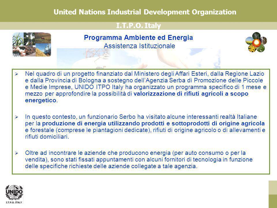 Programma Ambiente ed Energia Assistenza Istituzionale