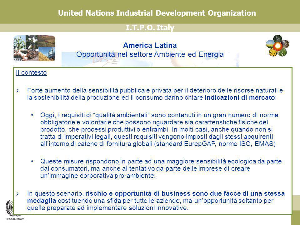 America Latina Opportunità nel settore Ambiente ed Energia