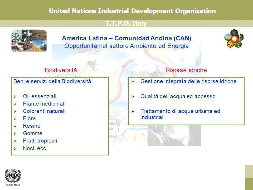 America Latina – Comunidad Andina (CAN) Opportunità nel settore Ambiente ed Energia