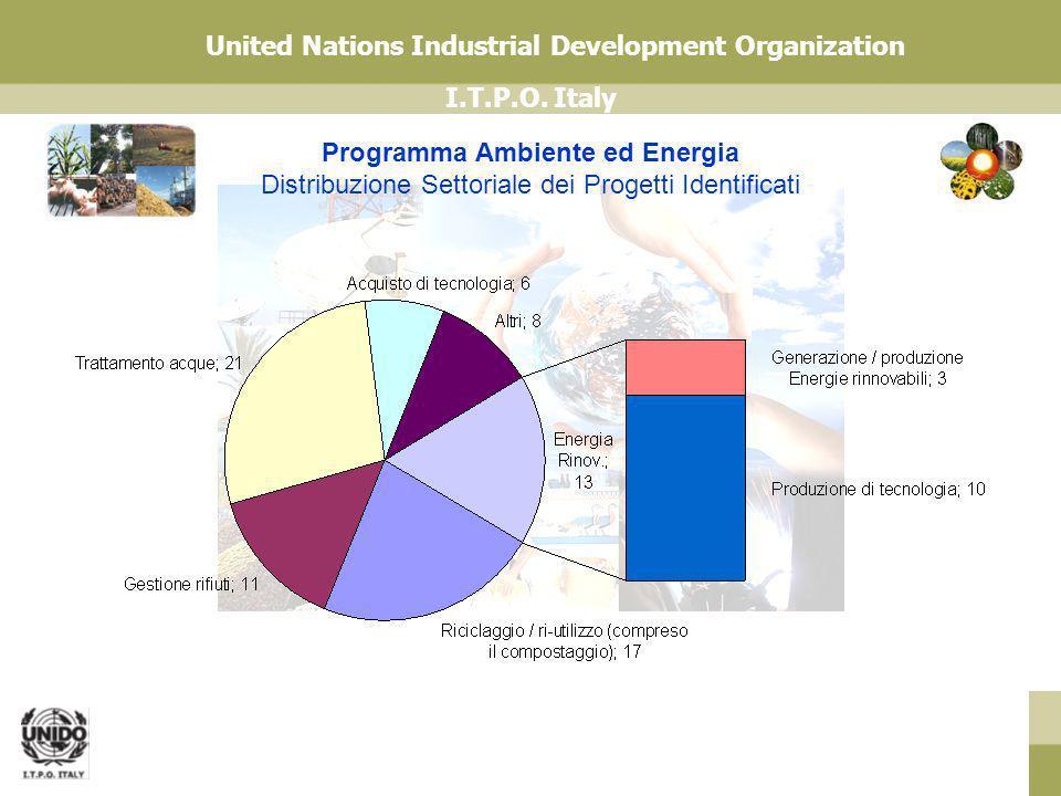 Programma Ambiente ed Energia Distribuzione Settoriale dei Progetti Identificati
