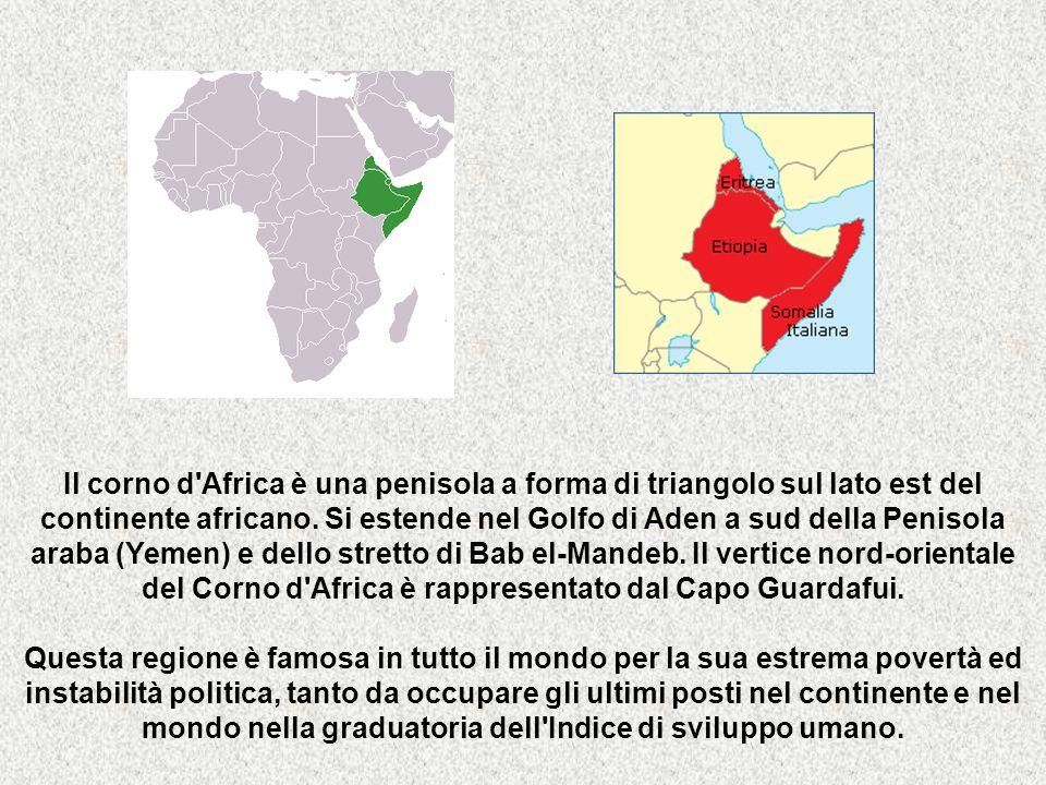 Il corno d Africa è una penisola a forma di triangolo sul lato est del continente africano. Si estende nel Golfo di Aden a sud della Penisola araba (Yemen) e dello stretto di Bab el-Mandeb. Il vertice nord-orientale del Corno d Africa è rappresentato dal Capo Guardafui.