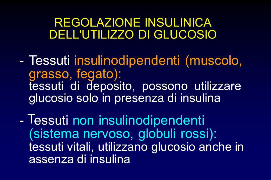 insulinodipendenti (muscolo, grasso, fegato):