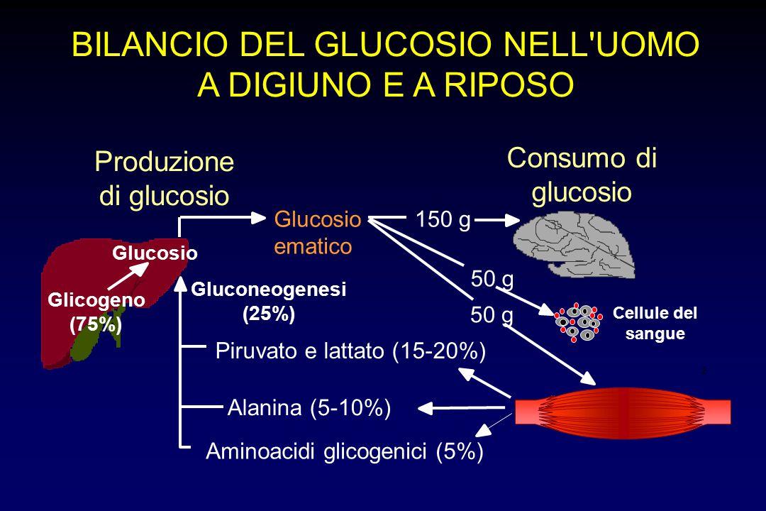 BILANCIO DEL GLUCOSIO NELL UOMO A DIGIUNO E A RIPOSO