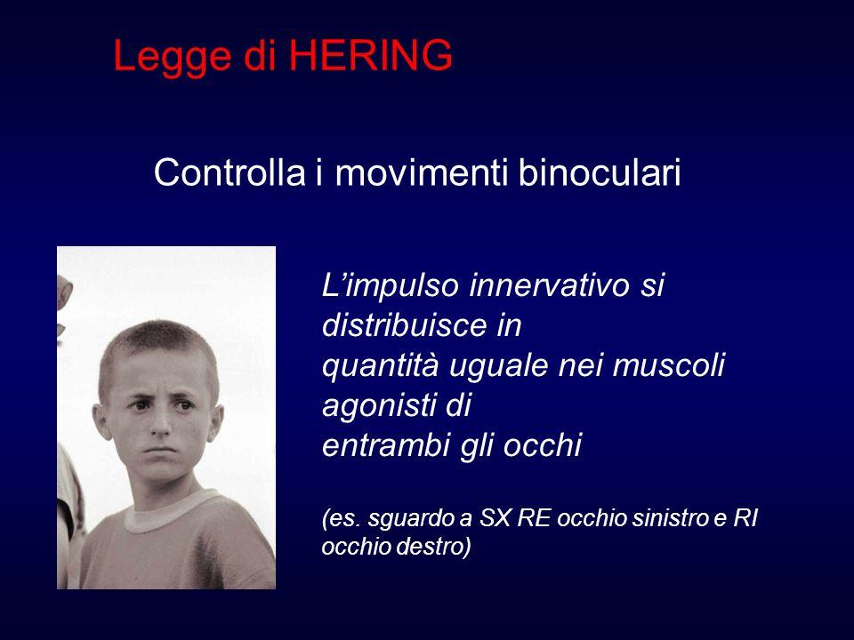 Legge di HERING Controlla i movimenti binoculari