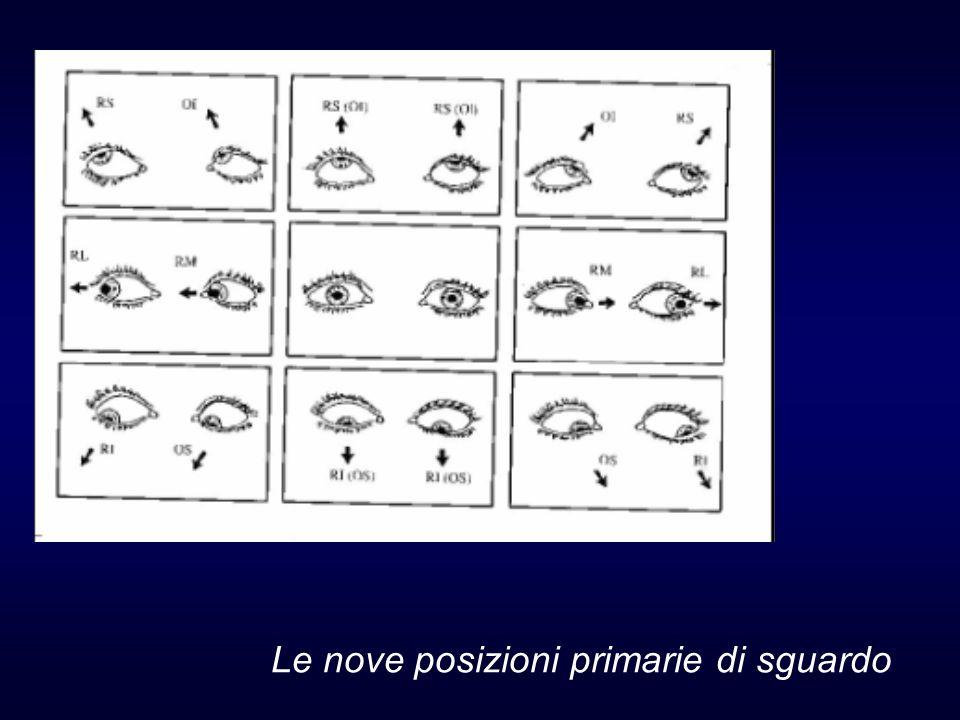 Le nove posizioni primarie di sguardo