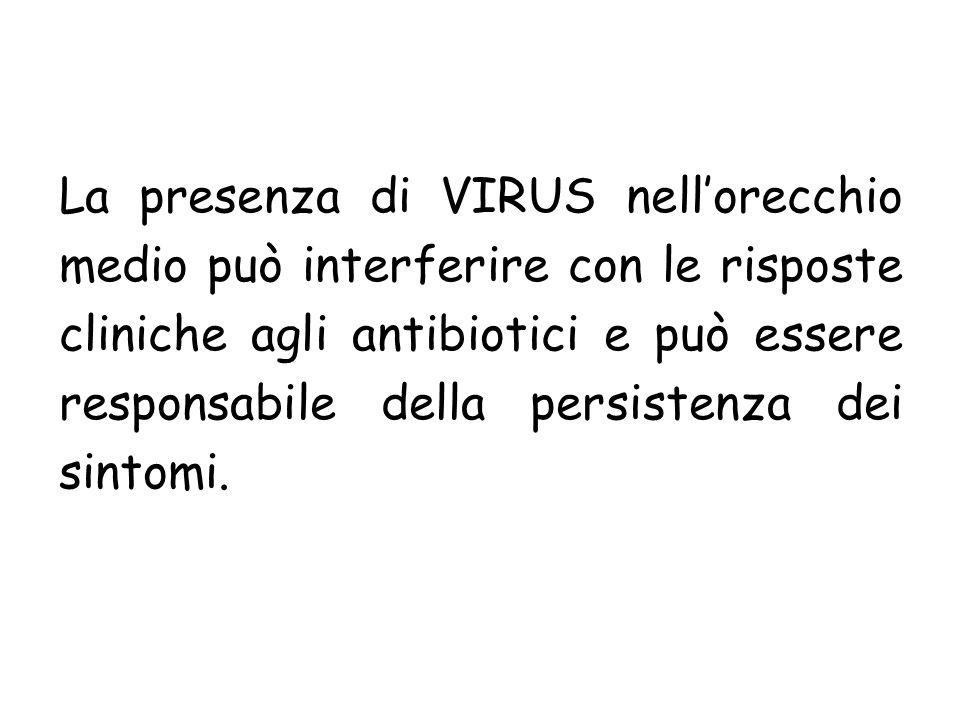 La presenza di VIRUS nell'orecchio medio può interferire con le risposte cliniche agli antibiotici e può essere responsabile della persistenza dei sintomi.