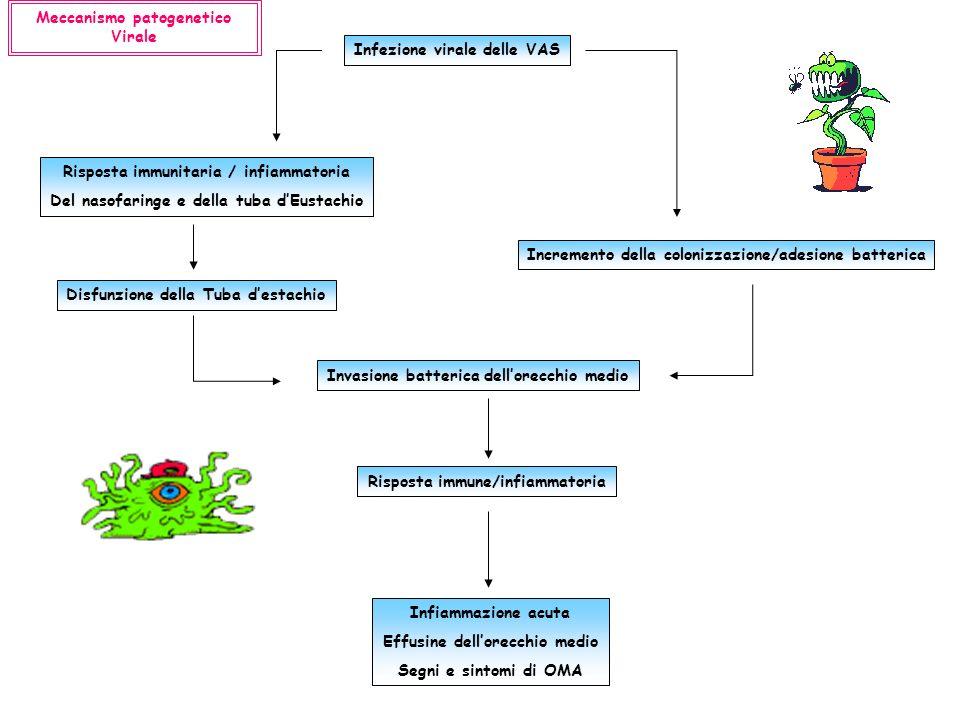 Meccanismo patogenetico Virale