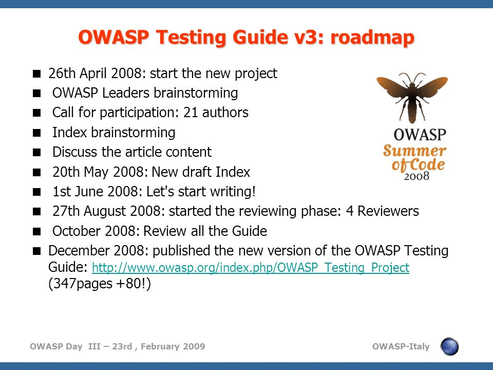 OWASP Testing Guide v3: roadmap