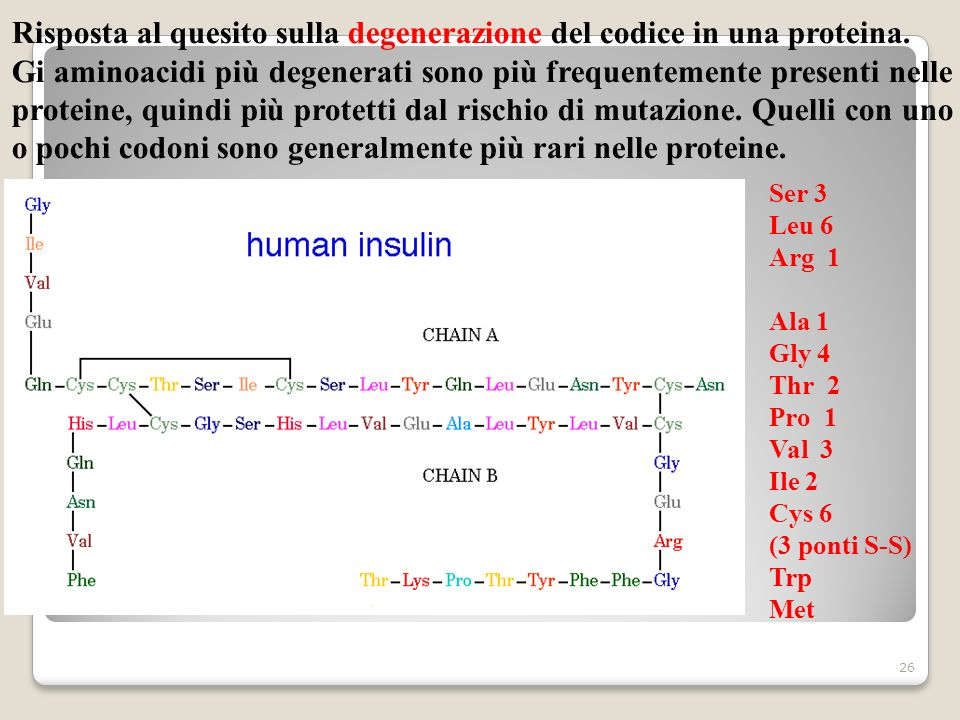 Risposta al quesito sulla degenerazione del codice in una proteina.