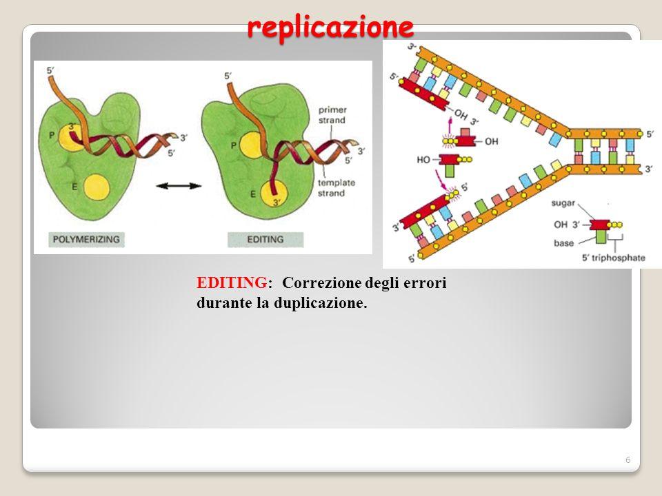replicazione EDITING: Correzione degli errori durante la duplicazione.