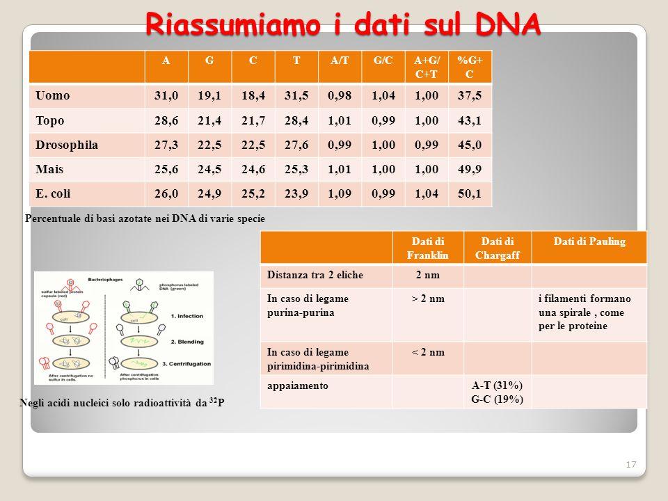 Riassumiamo i dati sul DNA