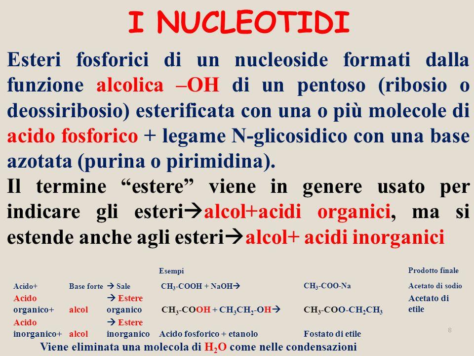 I NUCLEOTIDI